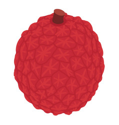 Tropical lychee icon isometric style vector