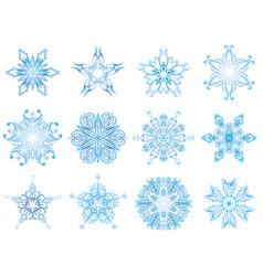 Unique snow crystals vector
