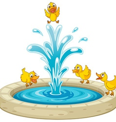 Ducks and fountain vector image