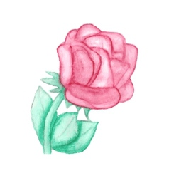 Gentle hand drawn watercolor rose vector image