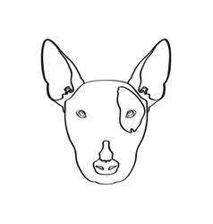 isolated bull terrier avatar vector image