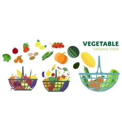 Vegetable on the basket vector