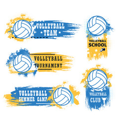 volleyball sport game ball trophy cup and whistle vector image