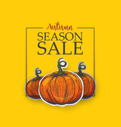yellow poster for autumn sale vector image