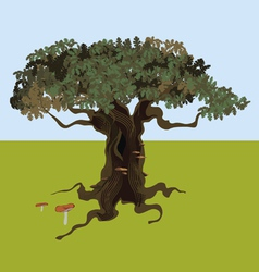 fantastic oak vector image vector image