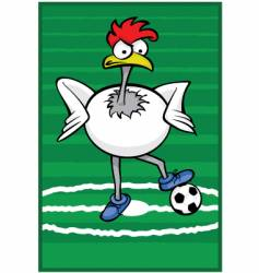 soccer rooster vector image vector image