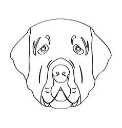 isolated golden retriever avatar vector image