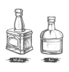 alcohol drink bottles sketch whiskey and rum vector image