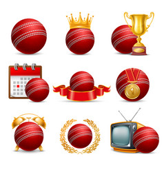 Cricket icon set vector
