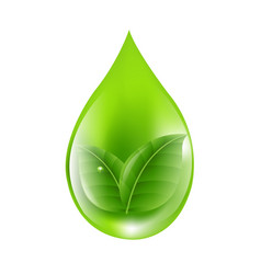 green drop vector image