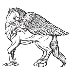 hand drawn realistic hipogriff in line style vector image