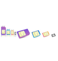 realistic sim cards icon set with different vector image