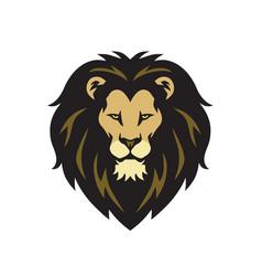 wild lion head logo vector image