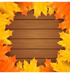 Autumn background with realistic maple vector image vector image
