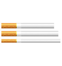 3 different detailed cigarettes long and slim vector image