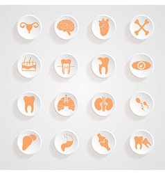 Body Icons button shadows set vector image