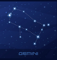 constellation gemini astrological sign vector image