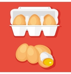 Eggs in container vector