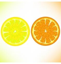 Lemon and Orange vector