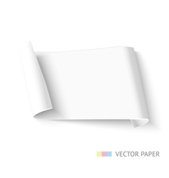Paper roll banner vector