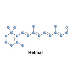 retinal vitamin a aldehyde vector image