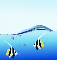 water bubble and angel fish vector image vector image