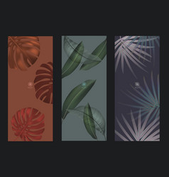 013-0320 - banner monstera leaf vector image