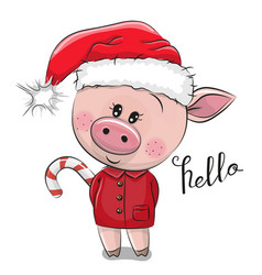 Cartoon pig in santa hat on a white background vector