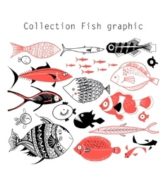 Collection wonderful graphics fish vector