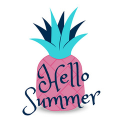 Hello summer banner with fruit place for text vector