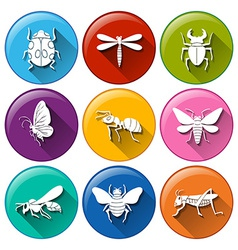 Insect icons vector image vector image