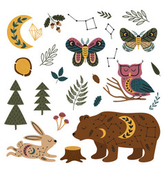 Set isolated magic forest animals and plants vector