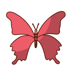 shadow pink butterfly cartoon vector image