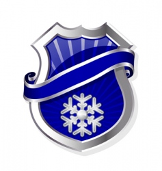 frame with snowflake vector image vector image