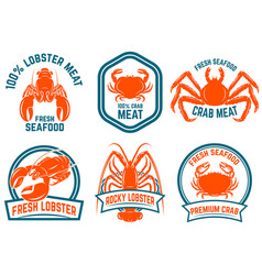 set of seafood lobster crab meat isolated on vector image vector image
