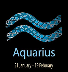 aquarius ornamental decorative zodiac sign vector image