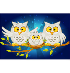 Cartoon funny family of grey owls vector
