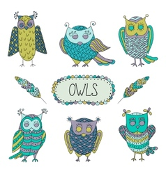 Cute cartoon owls with feathers vector image