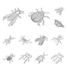 fauna and entomology symbol vector image