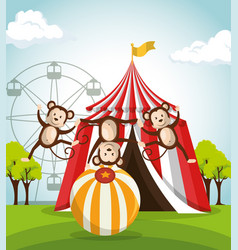 Monkeys circus show icons vector