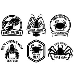 Set of crab meat lobster meat label design vector