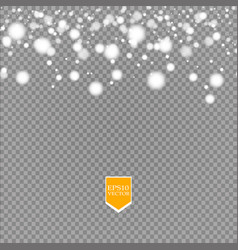 shine white snowflake with glitter isolated on vector image