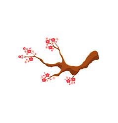 blossoming pink cherry tree sakura branch vector image