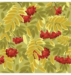 autumn rowan vector image