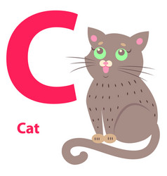 alphabet for letter c with cute cat vector image