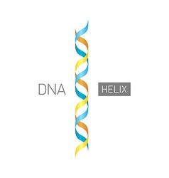 DNA logo vector image vector image