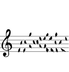 Abstract music stave with birds vector
