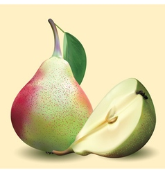 Big realistic pear with green leaves and half pear vector
