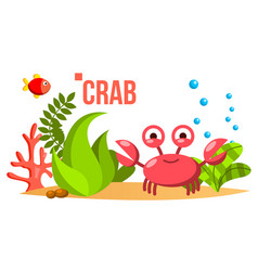 Crab sea ocean bottom with seaweed and vector