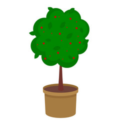 isolated green tree growing in pot with soil tree vector image